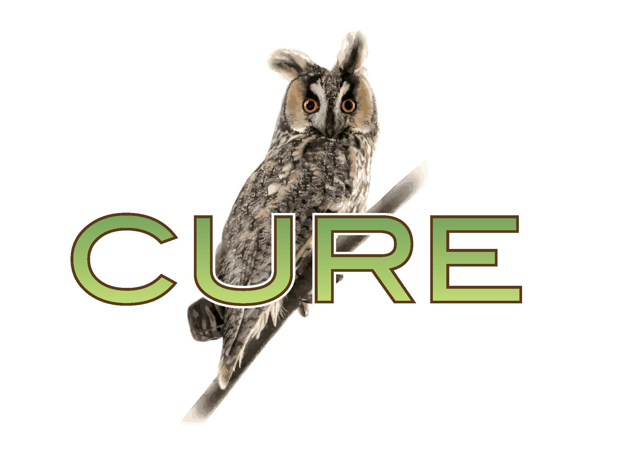 Cure Group